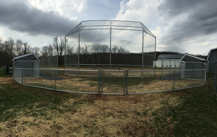 chain link ball field fence with backstop