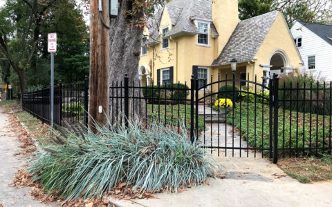 Ornamental aluminum fence with arched gate in yard