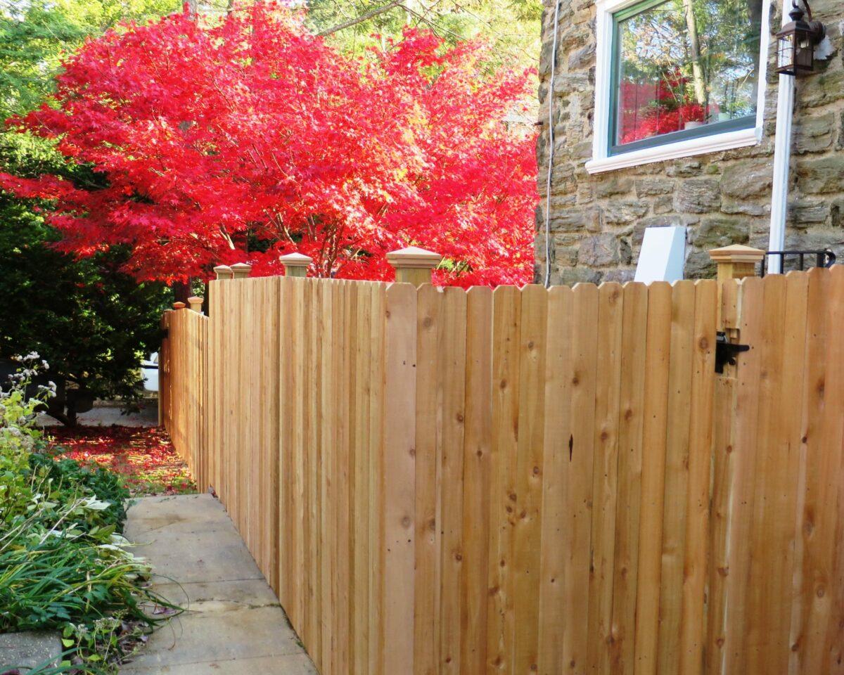 Red cedar solid board