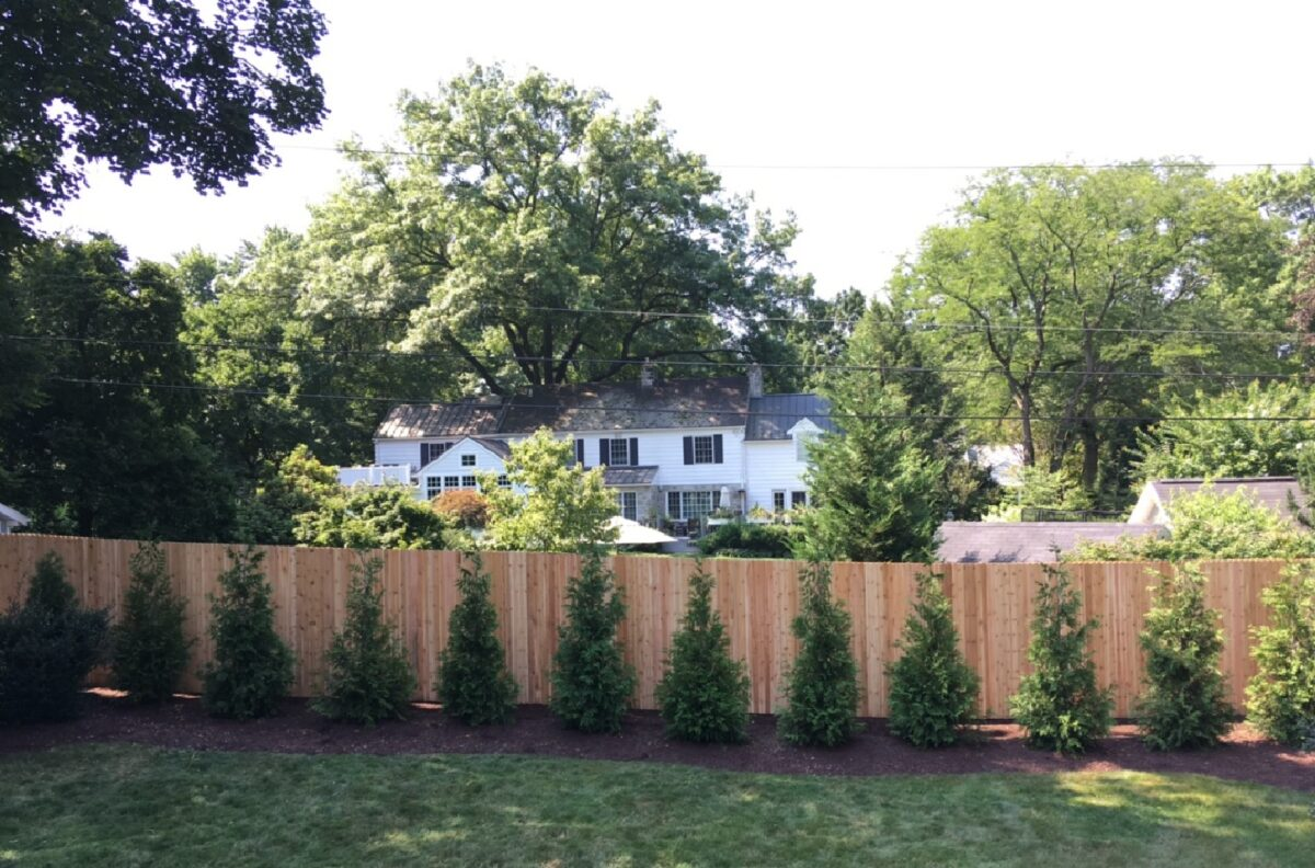 red cedar wood privacy fence
