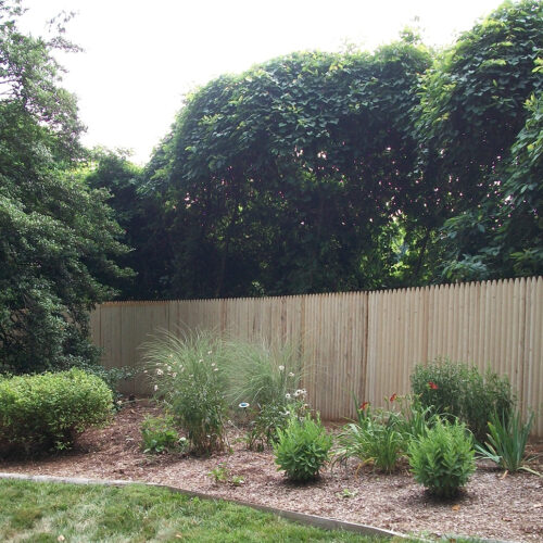Stockade fence in yard