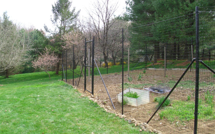 Deer fence protecting backyard garden