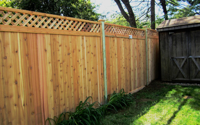Framed red cedar fence in yard with lattice top